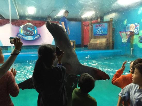 3.Klasse_Aquarium3